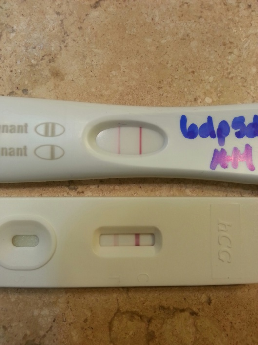 FRER (FMU) and Dollar Store test (mid-day) on 6dp5dt